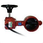 Butterfly Valves and Check Valves