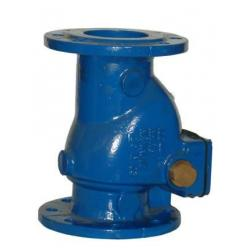 BS5153 Swing Check Valves