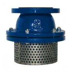 Foot Valve and Strainer